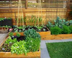 Small Picture Best Of Astonishing Vege Garden Design Ideas With Fascinasting