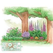 Small Picture Shade Garden Layout Made in the shade or sun Green Scene