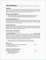 Summary Examples For Resume Simple Sample Resume For First Job Resume Professional Summary Examples