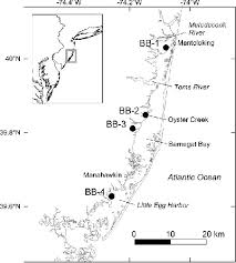 Barnegat Inlet Tide Chart 2016 Map Of The Barnegat Bay Study Area Showing The Marsh Core