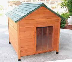 dog houses home depot lovely insulated dog houses fascinating big dog house plans gallery