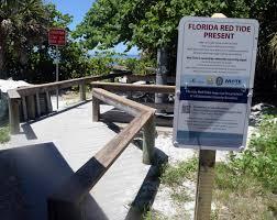 Caspersen Beach Tide Chart Red Tide In South Sarasota County Reversing Direction News