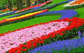 flower gardens free wallpapers for desktop