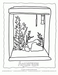 Small Picture Empty Aquarium Colouring Pages Aquarium Coloring Pages In Coloring