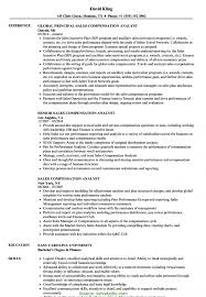 Analyst Resume Example Resume New Sales Examples - Sradd.me