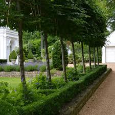 Small Picture Oxford Garden Design Landscape Gardeners 4 Clare Terrace