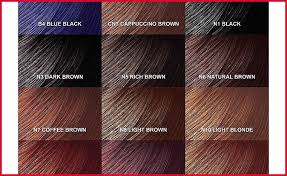 Freetress Color Chart Silk Elements Hair Color Chart Lajoshrich Com