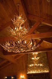 9 best light images on antlers deer antlers and chandeliers