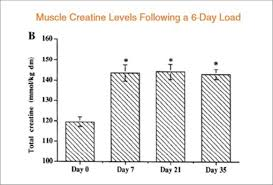 10 Graphs That Show The Immense Power Of Creatine