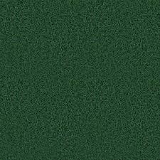 seamless dark grass texture. Seamless Dark Grass Texture O