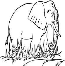 Small Picture Free Printable Elephant Coloring Pages For Kids For Elephant