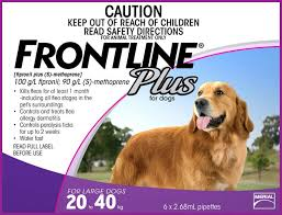 frontline for puppies. Frontline - Dog 20 40kg For Puppies