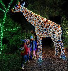 image result for garden of lights at brookside gardens
