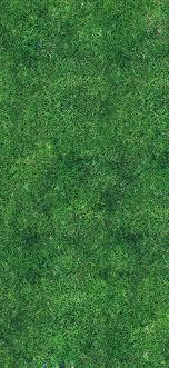 vg56-grass-texture-nature-pattern
