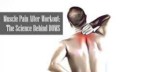 is muscle pain after workout good or
