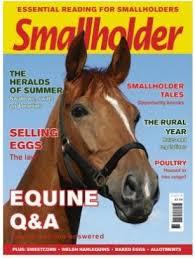 Small Holder Magazine Custom Small Holder Magazine Small Holder Magazine Time For Paws 32