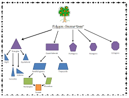 Polygon Geometree Graphic Organizer Graphic Organizers