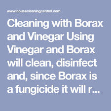 cleaning with borax and vinegar using