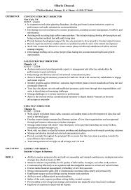 Director Resume Sample Strategy Director Resume Samples Velvet Jobs 75