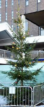 The Town With The Most Miserable Christmas Tree In Britain Plus Worst Christmas Tree