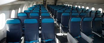 Economy Class Azerbaijan Airlines