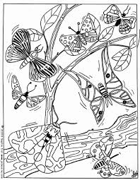 Small Picture BUTTERFLY coloring pages 43 ANIMALS of the world coloring books