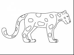 Safari Animals Template Coloring Pages Realistic Jungle Animals Safari Animal Free