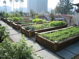 Rooftop Kitchen Garden Rooftop Vegetable Garden Ideas Home Decor Interior Exterior