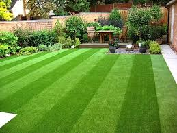 fake grass. Contemporary Grass This Grass Looks Real However It Is Not Amazing Fake Grass In Fake Grass 2