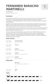 Investment Manager Resume Example Vintage It Asset Management Resume