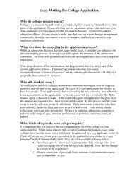 college application essay samples program format ideas bb nuvolexa  example of essays 15 sample college essay template brainstorm ideas for 19 bunch writing about l