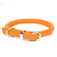 product information home all products dogs dog collars leads d h contemporary rolled leather collar