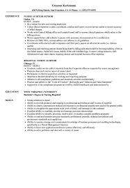 Auditor Job Description Resumes Nurse Auditor Resume Samples Velvet Jobs