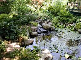 Fall Landscaping Water Fall Feature Landscape Designs
