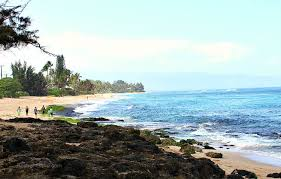 Laniakea Beach Better Known As Turtle Beach On The North Shore