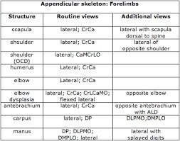 Veterinary Radiology Positioning Chart Veterinary Imaging Associates