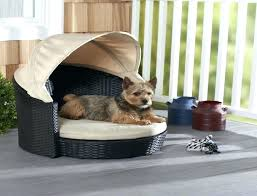 outdoor cooling dog bed outdoor beds for dog outdoor dog beds with canopy data centre design outdoor cooling dog bed