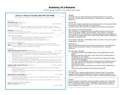 Skills Relevant To The Position S You Are Applying For Anatomy Of A Resume