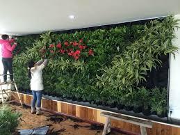 green wall office. Installing A Green Wall. Photo Credits: Nathan O. Tylor Wall Office