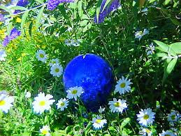 years ago my family got me a big cobalt blue gazing ball for my daisy flowerbed and i knew i wanted more more more but hey those gazing are