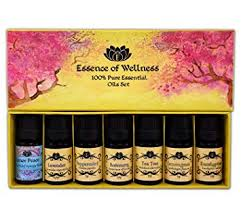 Aromatherapy Scent Chart Amazon Com Wellness Specialized Essential Oils Gift Kit