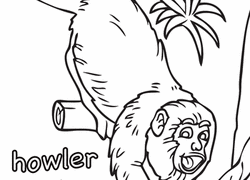 These free printable monkey masks are perfect for halloween or jungle playtime with your preschool, kindergarten or elementary click and get this free printable cute baby cartoon monkey coloring page! Monkey Coloring Pages Printables Education Com