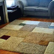 16 photos of diy area rug cleaning 4 ways to clean oriental rugs wikihow