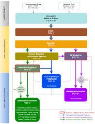 Gp Rating Career Flow Chart Medical Education In Australia Wikipedia