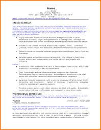Career Summary For Resume Resume Online Builder