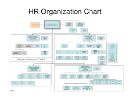 Human Resources Organizational Chart Best Photos of HR Department Structure Chart Human Resources 1