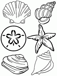 Free Printable Seashell Coloring Pages For Kids Patricias