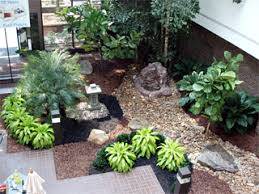 interior landscaping office. Int01_office_plants.png Interior Landscaping Office