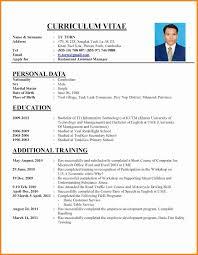 Curriculum Vitae Sample Job Application Writing A Perfect Curriculum