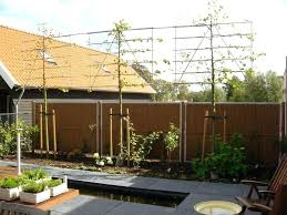 Adorable Outdoor Privacy Screen Ideas Pictures Diy Patio Privacy Screens As  Well As Garden Privacy Ideas Uk